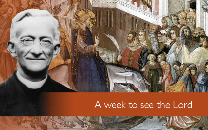 A week to see the Lord