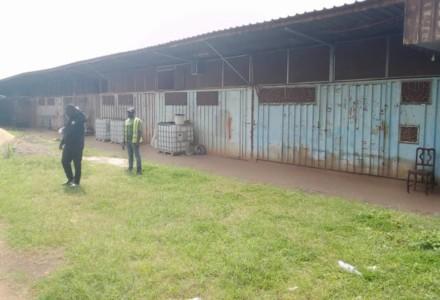 Jeunes en Difficultés (JED): Une œuvre sociale des Prêtres du Sacré-Cœur au Cameroun