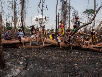 About the situation of the indigenous people in Brazil