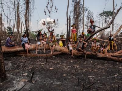 A situação indígena no Brasil