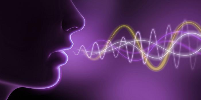 Sem a Palavra, a voz emudece!